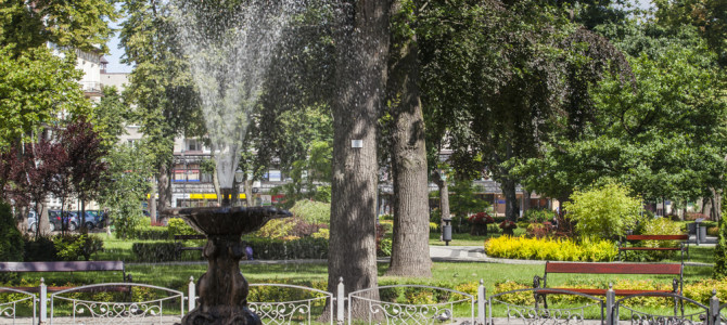 Miejski Park Solidarności